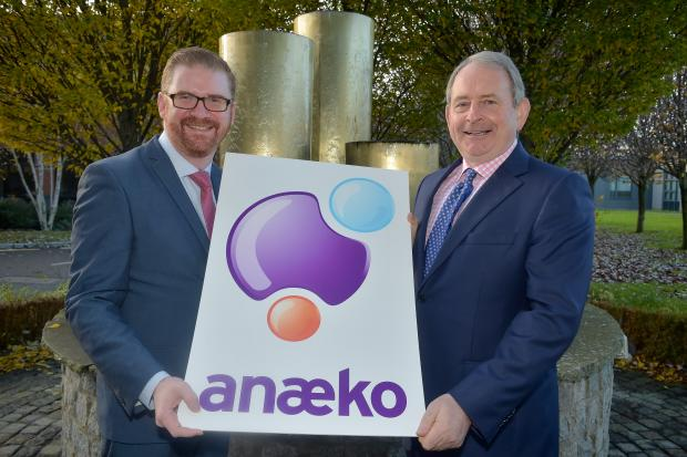 Hamilton welcomes fifteen new jobs at software company Anaeko